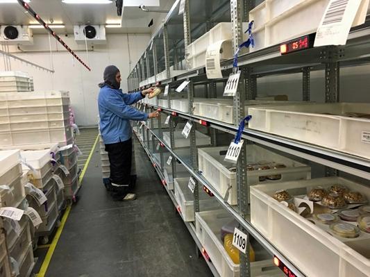 Pcdata voorziet voedselfabrikant van Pick- & Put to Light systeem