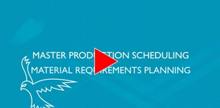 Master Production Scheduling/Material Requirements Planning