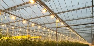 Meer vat op tuinbouwmaterialen